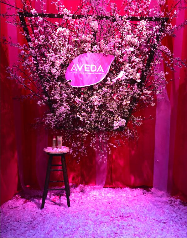 AVEDA [Cherry Almond] Event Display 2019 表参道ヒルズ